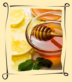 Мед с лимоном: польза при простуде и не только