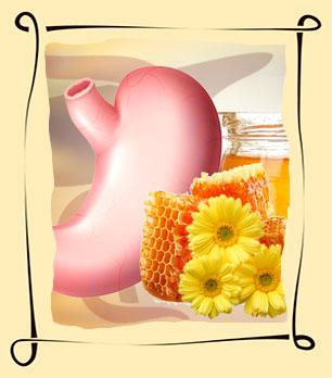 Лечение желудка медом